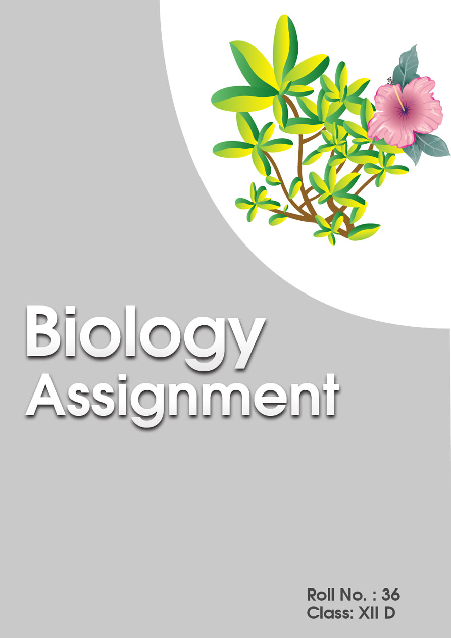 assignments cover pages my design blog cover chemistry bio all bio